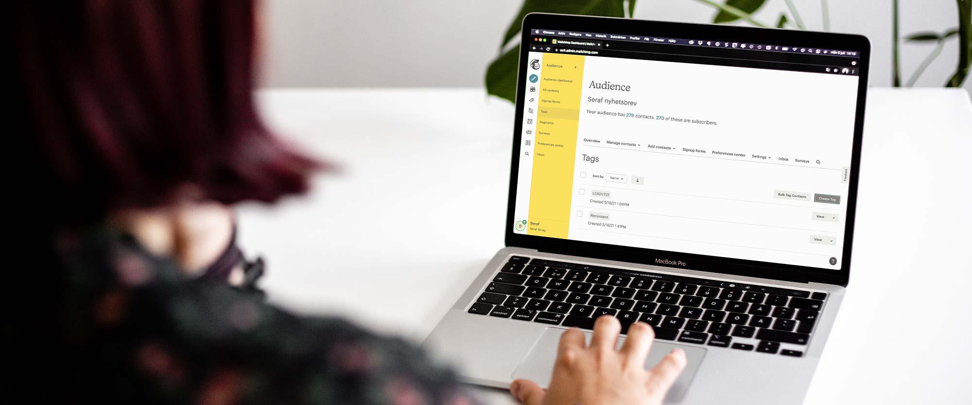 Onlinekurs Taggar, grupper och segment med Mailchimp